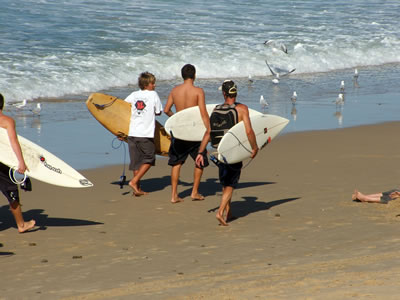 Group of young surfers carrying surfboards,