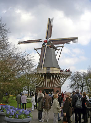 Windmill in Keukenhoff gardens Holland